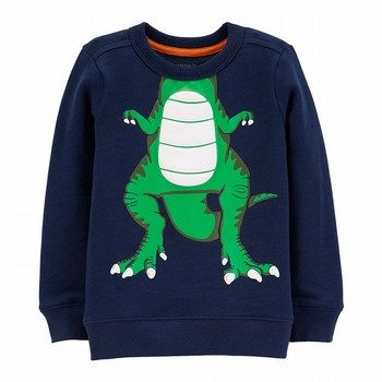 Carter's Dinosaur Character Pullover