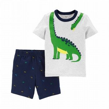 Carter's 2PC Dinosaur Tee & Schiffli Short Set
