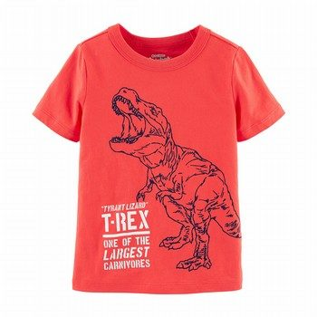 OshKosh B'gosh Originals T-Rex Graphic Tee