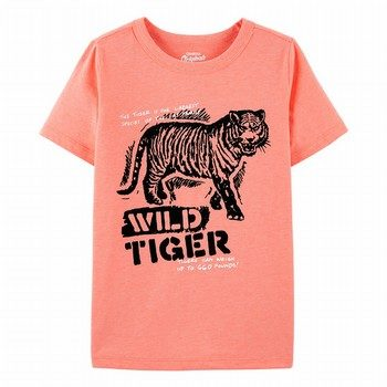 OshKosh B'gosh Originals Tiger Graphic Tee